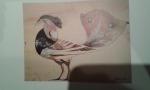 Gabrischevsky-st-1941-gouache sur papier calque (oiseau).jpg