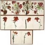 Gasiorowski regressions-les-fleurs-1973_1274259011.jpg